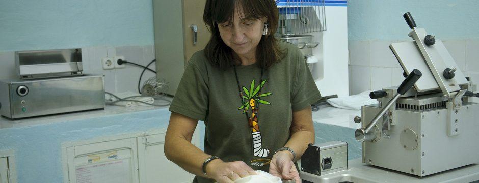 María Elena del Cacho